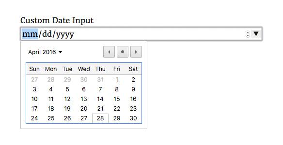 USP Pro - Custom Date Input